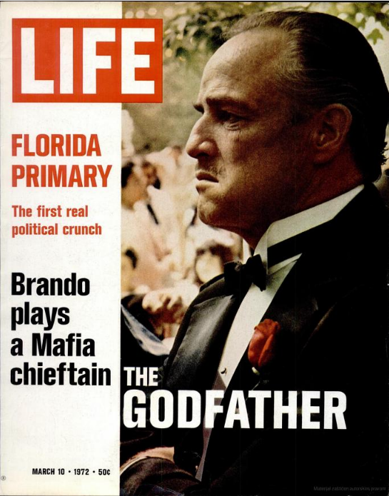 essay of godfather