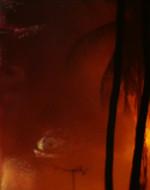Alberi in fiamme mentre gli elicotteri continuano a sorvolare la giungla in fiamme.