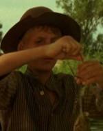 Il piccolo Alfredo Berlinghieri corre oltre la siepe dove Olmo, suo coetaneo, sta immobile nell'acqua di un fosso. Scatta ogni volta con rabbia, e ogni volta le sue mani infallibili si stringono attorno a una rana.  //  OLMO: Diciannove!