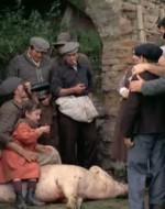 La piccola Anita, che ha ormai 8 anni, corre a sedersi sul maiale morto, accanto al suo papà Olmo.  //  VECCHIA CONTADINA: Attento, Olmo, Attila dice che non ti dobbiamo far lavorare. // GIOVANE CONTADINA: Dice che sei diventato un norcino per poter andare nelle case a predicare la sovversione famiglia per famiglia.