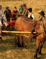 Sono passati alcuni anni. Sullo stesso prato del brindisi avanza un rastrello meccanico trainato da un cavallo. Alla guida c'è Giovanni, il figlio del vecchio Berlinghieri. Quando si ferma, lo raggiunge Leo insieme a uomini e donne della sua famiglia, tutti incuriositi dallo spettacolo.  //  LEO: E questo me lo chiamate un lavoro ben fatto, signor Giovanni? // GIOVANNI: Ma ti rendi conto, testone, che questa è roba che viene dall'estero? Siamo i primi nella Bassa ad avere un rastrello meccanico… // LEO: Allora beati gli ultimi!