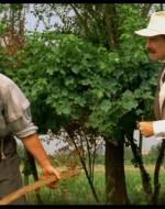 LEO: Il mio è nato prima… si sa… prima c'erano i contadini. E poi sono venuti i padroni. // ALFREDO: Padroni, contadini… Balle! Appena nati siamo tutti uguali.