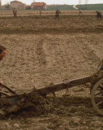 I cavalli trascinano l'aratro sui campi. A guidare l'attrezzo è Olmo che, al lavoro, canta a squarciagola con tutta la rabbia che ha in corpo. Da lontano si odono le grida disperate di Stella a cui le guardie stanno arrestando il marito e il di lui fratello, accusati di sovversione.