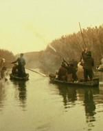 Provengono dai fucili dei proprietari terrieri impegnati in una battuta di caccia alle anatre.