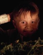 E' notte. Tutti cercano Alfredino, e lui è andato a rifugiarsi nell'aia della corte dei Dalcò. E' salito sopra un carro carico d'erba e ora guarda Olmo che viene rapato per togliergli i pidocchi.